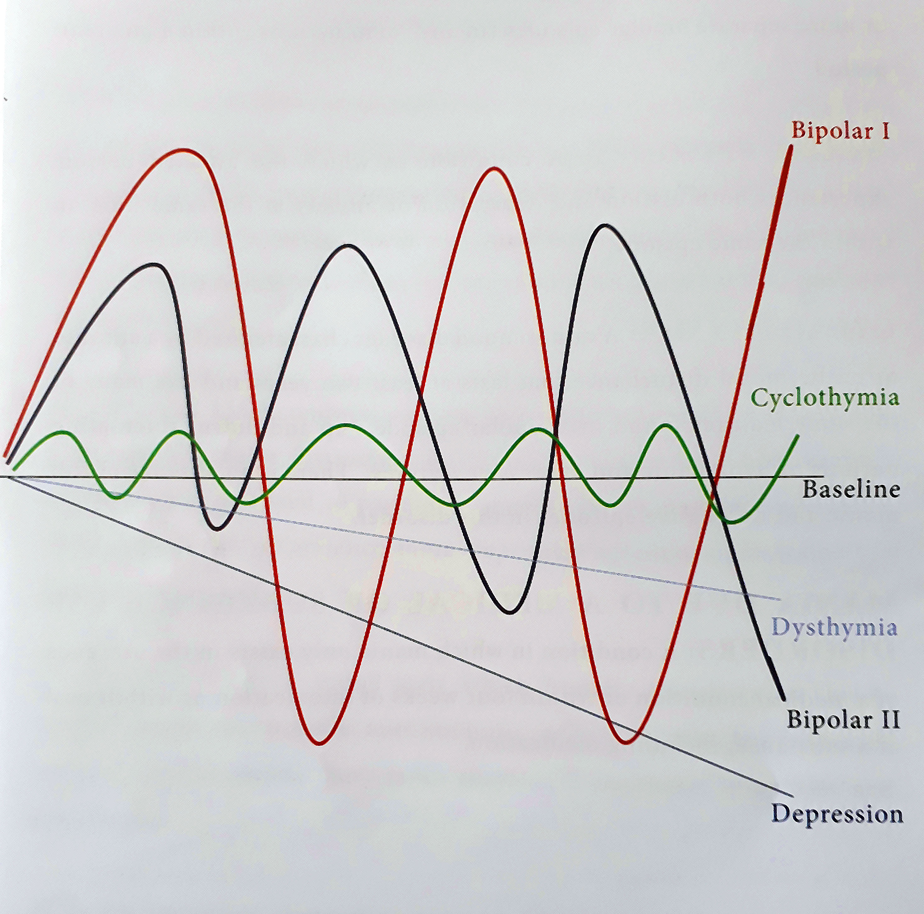 The above graph is a pictorial representation of the affective symptoms or  mood states of common clinical mood disorders.
